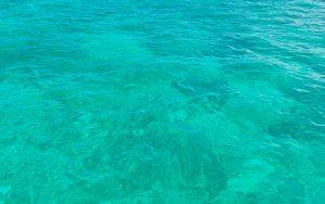 海が冷たい…❄
