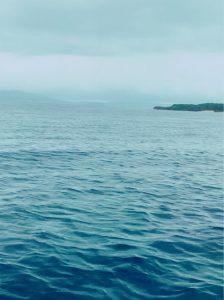 コロナ&台風のダブルパンチ🥺